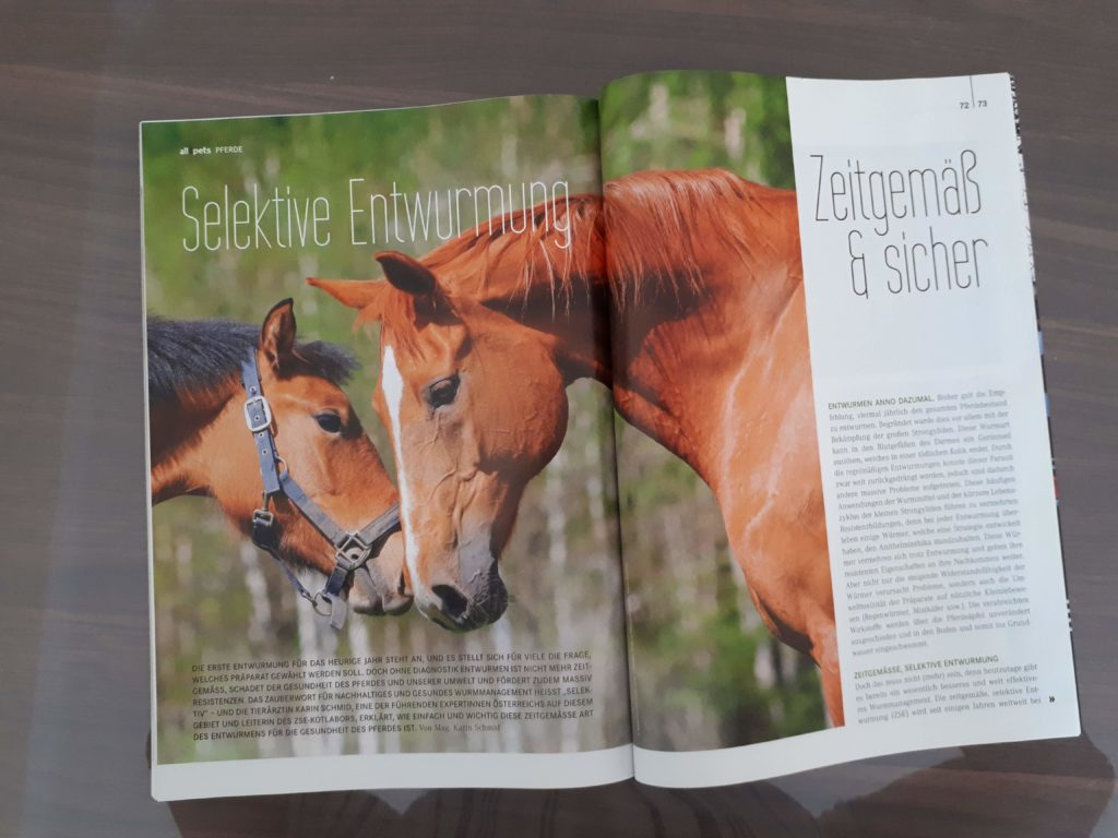 Artikel in Pferde Revue