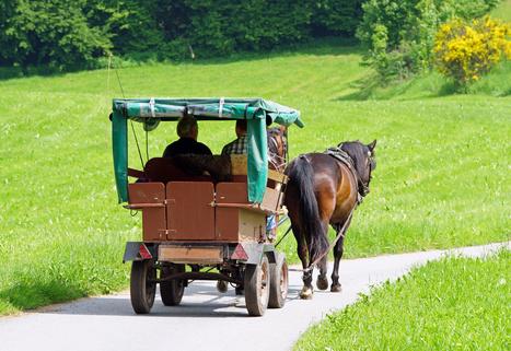 Pferdekutsche von hinten